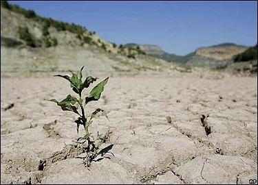 خشکی تالاب
