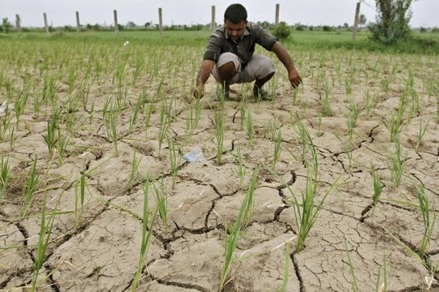 تغییر الگوی مصرف آب کشاورزی