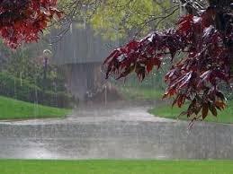 جمعآوری آب باران راهکار برونرفت بحران کمآبی